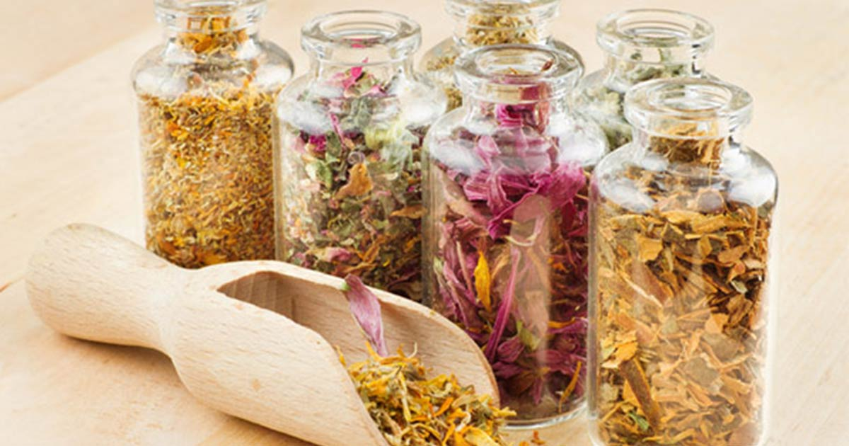 Jars of dried herbs